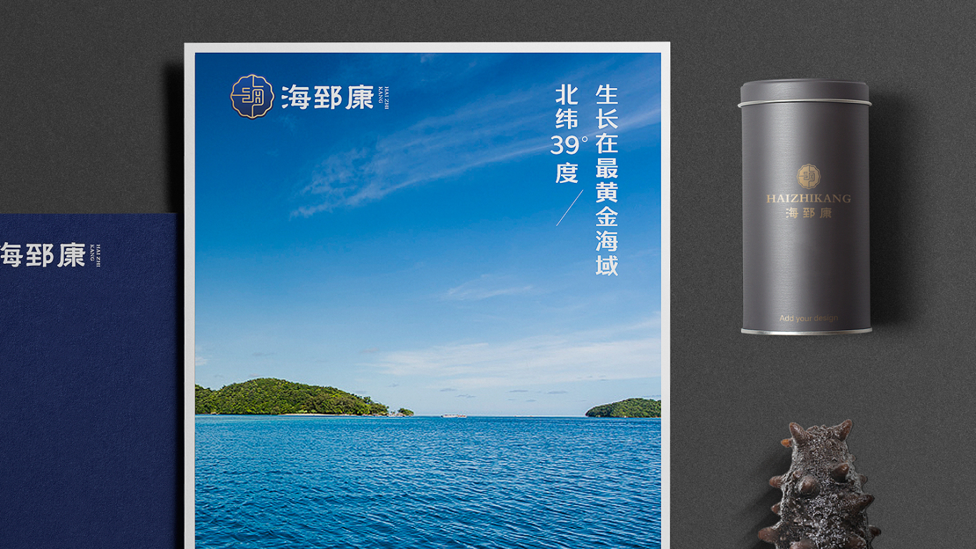 海郅康高端海參品牌LOGO設計中標圖13