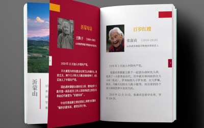 红嫂情农产品画册设计