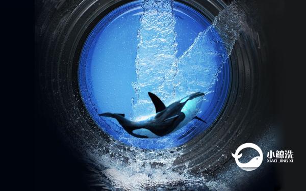 小鯨魚洗護連鎖LOGO品牌