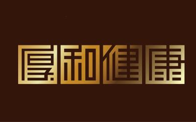 厚和健康-品牌字体标志