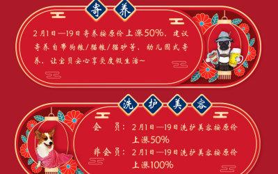 星寵家春節日常海報設計