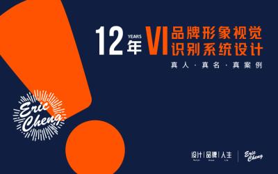 专注设计12年-品牌VI设计