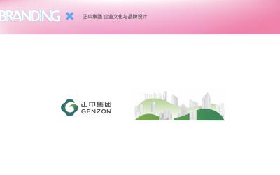 正中集团-企业IP形象设计