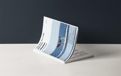 广外《太平洋岛国动态》期刊设计