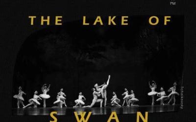 杭州天鵝湖演出海報