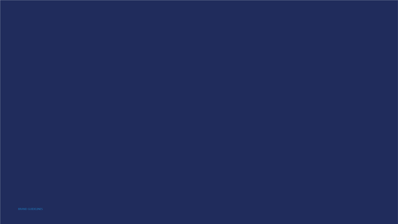 大越期货金融期货品牌VI设计中标图32