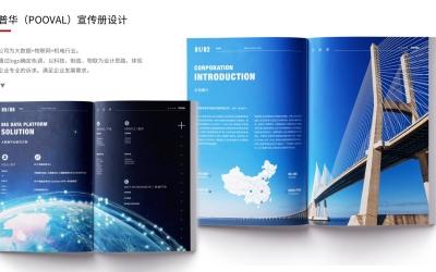 普华数据/大数据物联网/画册设计