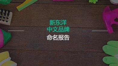 新东洋家居生活清洁产品中文命名