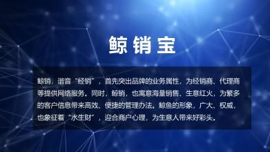 鲸销宝互联网类中文命名