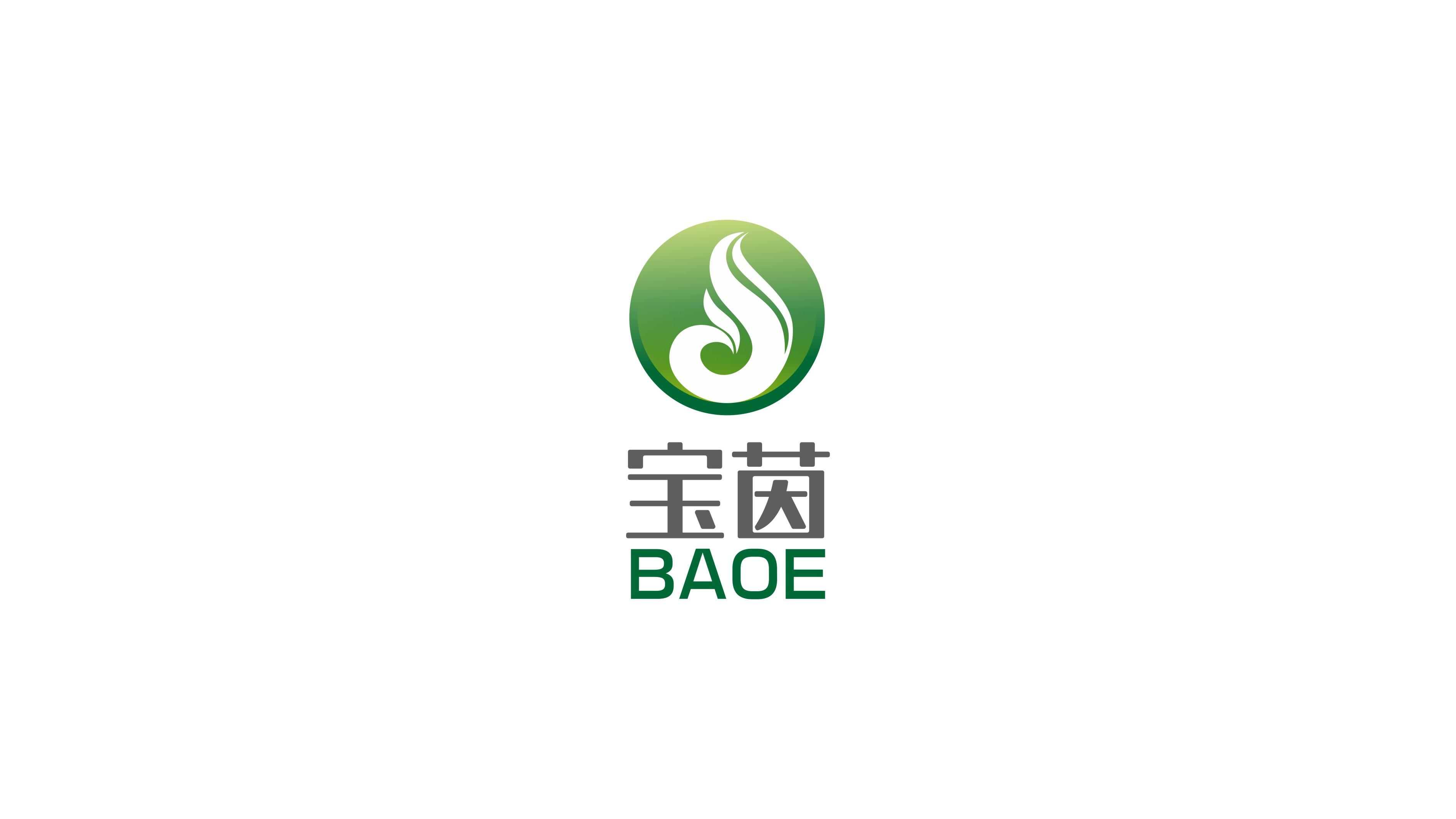 宝茵综合型企业LOGO设计