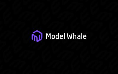 数据科学协作平台 ModelW...