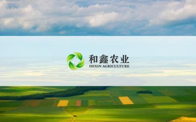 和鑫农业发展有限公司logo设...