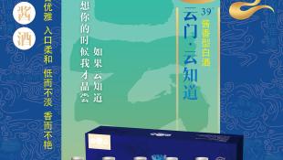 云门陈酿白酒品牌折页设计