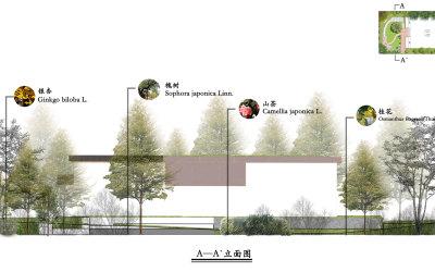 庭院植物配置设计