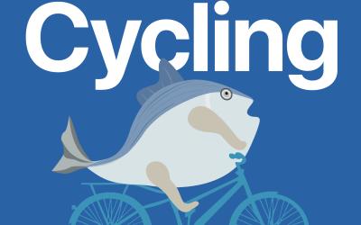 共享自行车品牌设计