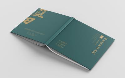 工业园画册设计