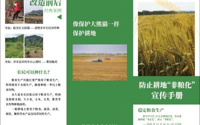 杭州农业局防止土地非粮化宣传手...