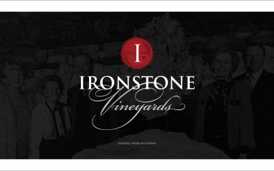 红酒品牌宣传手册