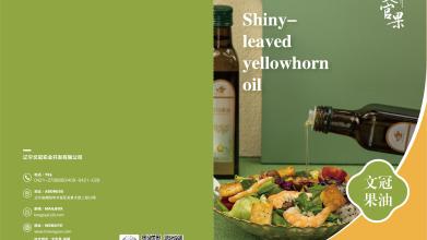 文冠果油食品类画册设计