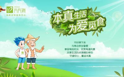 武汉片片海官网设计