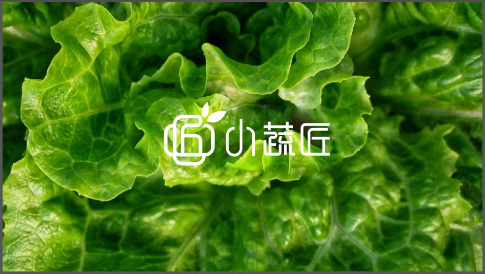 小蔬匠轻食品牌LOGO设计中标图3