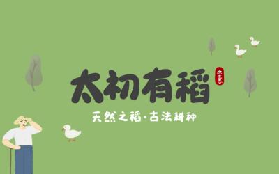 太初有稻手绘大米包装设计