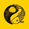鱼与熊掌是来自乌鲁木齐的设计公司