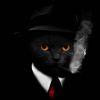 邦爍創意是來自廈門的設計公司