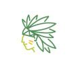 群岛主Idea是来自深圳的设计师